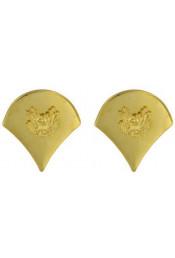 Золотые петлицы специалиста 1648